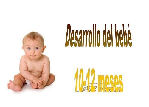 El desarrollo del bebé (10-12 meses)