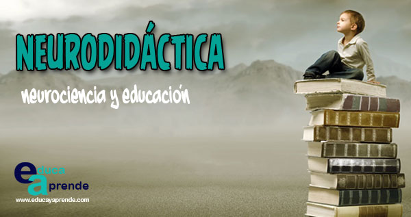Neurodidáctica, neurociencia y educacion