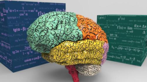 Neurodiversidad y Educación inclusiva