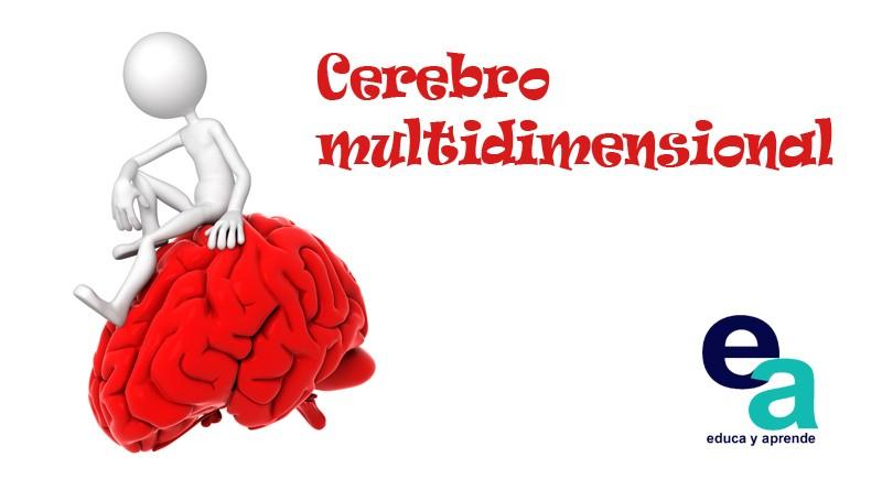 Cerebro multidimensional